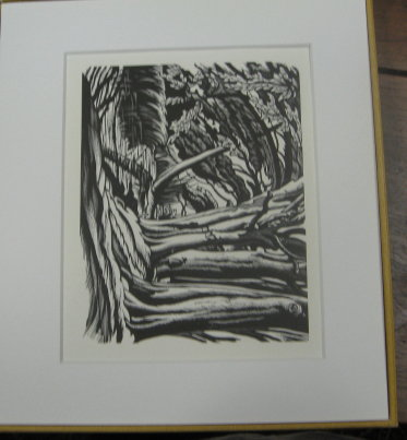 The Wood Engravings of Ethelbert White, With an Introduction by Peyton Skipworth. Hilary Chapman.