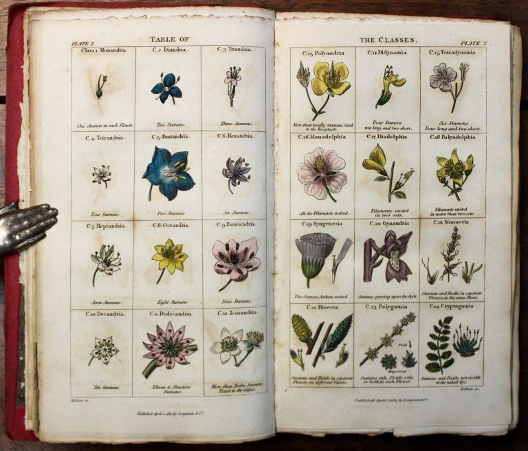 Conversations on Botany. With plates. Elizabeth Fitton, Sarah Mary.