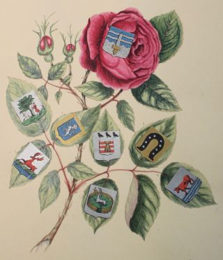Original Manuscript]. Arms, Crests, and Monograms. Collected, and Illustrated in Design by Alice J. Woodward.