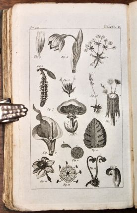 An Introduction to Botany, in a Series of Familiar Letters. With Illustrative Engravings.